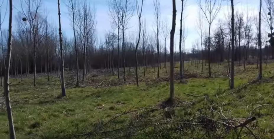Broyage en Dordogne – 3 nouvelles vidéos